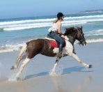 2005 riding on beach2