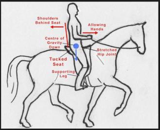 balanced-rider